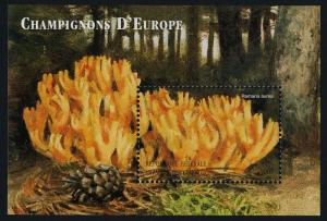Comoro Islands 922 MNH Mushrooms