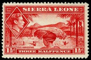 SIERRA LEONE SG190, 1½d scarlet, VLH MINT. Cat £20.