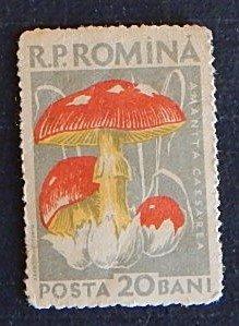 Romania, Mushroom, (№1571)