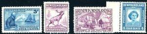 Newfoundland #stamp lot MINT OG NH/LH
