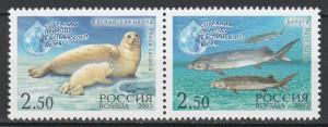 Russia 2003 Fauna, Animals, Sea, Marine, Mammals, Seals 2 MNH Stamps