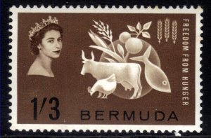 Bermuda 1963 QE2 1/-3d Freedom From Hunger Umm SG 180 ( J470 )