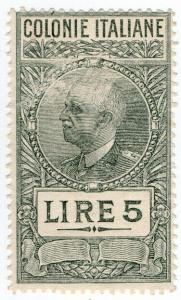 (I.B) Italy (Eritrea) Revenue : Duty Stamp 5L