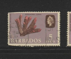 BARBADOS #271   1965  5c    QEII & STAGHORN CORAL    USED F-VF   e
