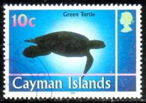 Green Turtle, Marine Life, Cayman Islds stamp SC#802 used