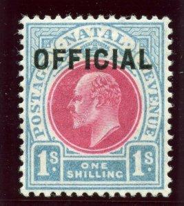 Natal 1904 KEVII Official 1s carmine & pale blue MLH. SG O6. Sc O6.