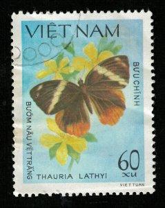 Butterfly (RT-2031)