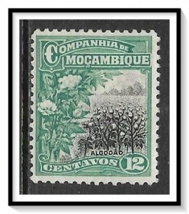 Mozambique Company #129 Cotton Field MHR