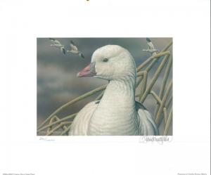 RW73 2006 FEDERAL DUCK STAMP PRINT ROSS' GOOSE by Sherrie Russell Meline