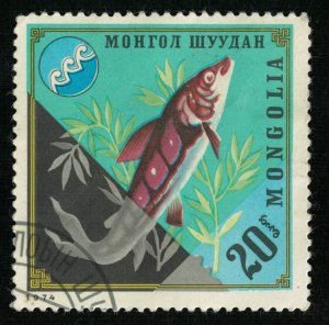 Mongolia, Fish, 20₮, 1974 (T-7070)