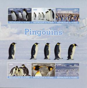 Chad Birds on Stamps 2017 MNH Penguins Penguin 6v M/S
