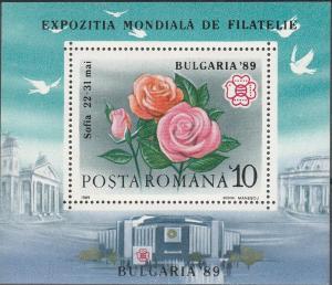 Romania #3571  MNH F-VF CV $3.50  (SU2550)