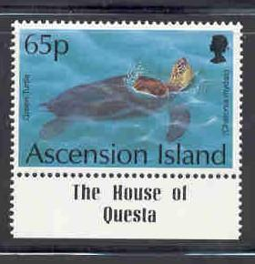 Ascension Sc 588 1994 65p Turtle stamp mint NH