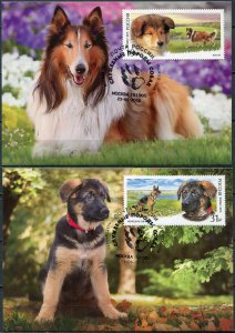 Russia. 2016. Service Dog breeds (Mint) Set of 2 Maxi Cards