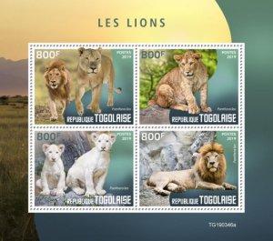 TOGO - 2019 - Lions - Perf 4v Sheet - MNH