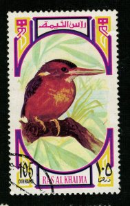 Bird, Ras al-Khaimah (ТS-2257)