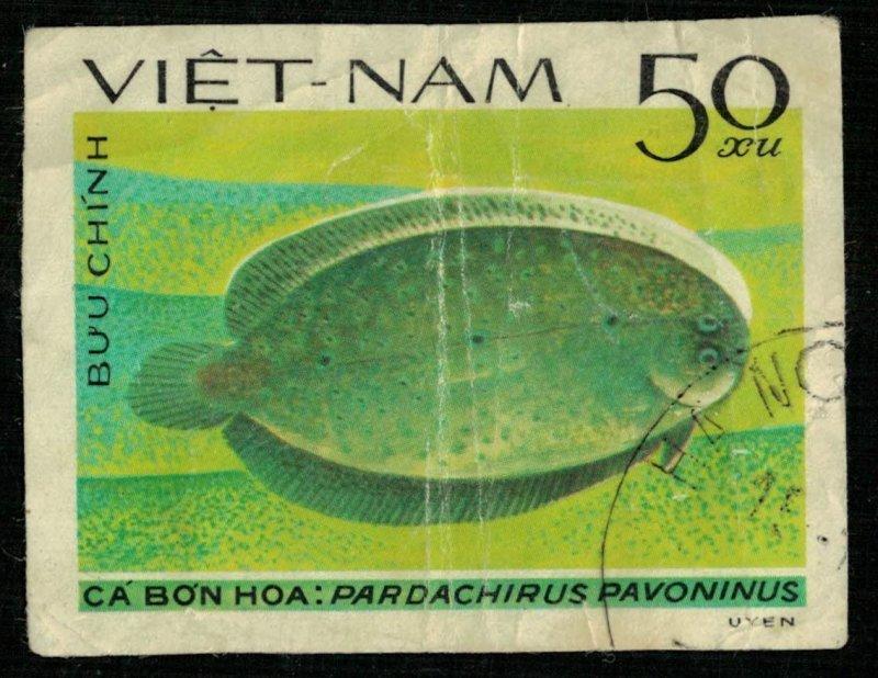 Fish 50xu (T-5320)
