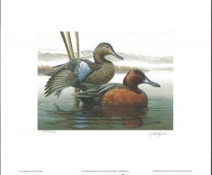 IDAHO #1 1987 STATE DUCK PRINT CINNAMON TEAL EXECUTIVE  EDITION by Robert Leslie