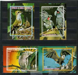 EQUATORIAL GUINEA FAUNA/BIRDS SET OF 4 S/S PERF.& IMPERF.MNH