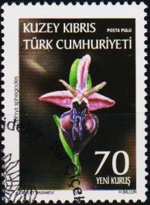 Cyprus(Turkish). 2008 70k Fine Used