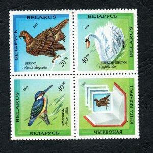 1994 - Belarus - Rare Birds of Belarus - Oiseaux rares - Complete set 4v.MNH**