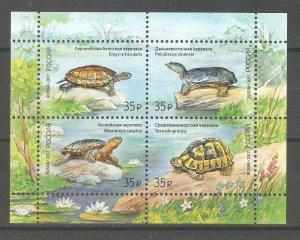 Russia 2017,Russian Fauna Series,Turtles Block-Sheet of 4,Sc # 7816a-d,VF MNH**
