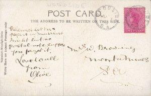 SAPC04) South Australia PPC Valentines Moonlight, 1905 sent Woodside to SA