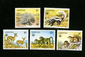 Lesotho Stamps # 228-32 XF OG NH WWF Catalog Value $56.50
