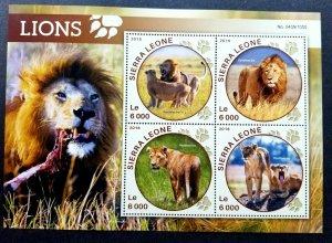 *FREE SHIP Sierra Leone Wildlife Lions 20016 Wild Animal Big Cat Mammal (ms MNH