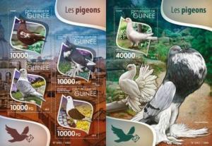Guinea 2015 pigeons birds klb+s/s MNH