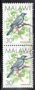 MALAWI   SC# 526  USED 1988  30t  BIRD  PAIR  SEE SCAN
