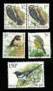 Birds, Belgium (3294-T)