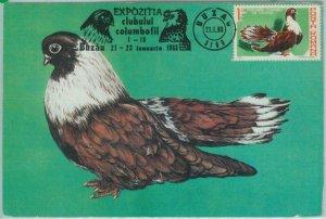 81320 - ROMANIA - Postal History - MAXIMUM CARD - 1983  Birds - Special postmark
