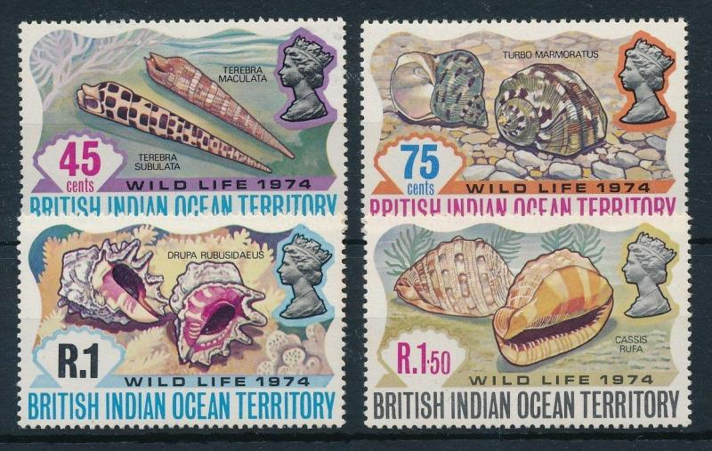 [23458] British Indian Ocean Territory 1974 Sea Shells MNH