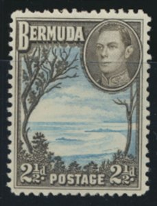 Bermuda  SG 113a perf 11.9  SC# 120A MNH Grape Bay  see details and scans