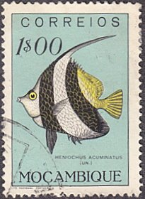 Mozambique # 339 used ~ 1e Pennant Coral Fish