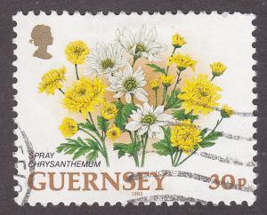 Guernsey 492 Hinged 1993 Spray Chrysanthemum