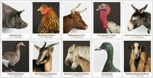 2021 55c Heritage Breeds, Turkey, Horse, Block of 10 Scott 5583-5592 Mint VF NH