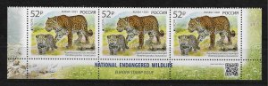 Russia 2021,Rare Cats of Prey,Leopard with Cub,Endangered Wildlife,Europa Issue