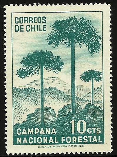 Chile 1967 Scott# 363 MNH