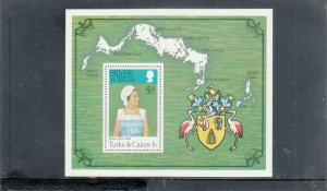 TURKS & CAICOS ISLANDS 1413 SOUVENIR SHEET MNH 2019 SCOTT CATALOGUE VALUE $10.00
