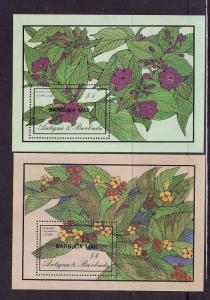 Barbuda-Sc#826-7-two unused NH sheet-Flowers-1986-