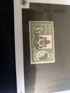 Bermuda 162 LH