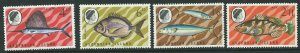 ASCENSION SG117/20 1969 FISH (2nd SERIES)MNH