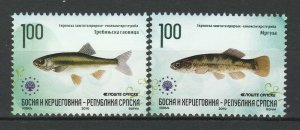 Bosnia and Herzegovina Serbian 2010 Fauna Fish 2 MNH stamps