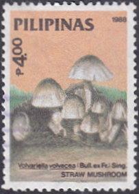 Philippines # 1954 used ~ 4p Mushrooms - Straw