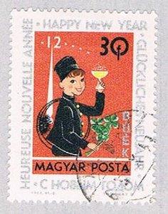 Hungary New Year 3 (AP108809)