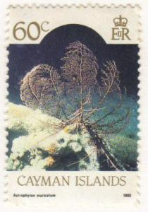 Cayman Islands #269 MLH - 60c coral