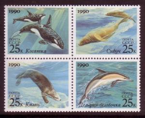RUSSIA SC# 5933-5936 Marine animals MNH