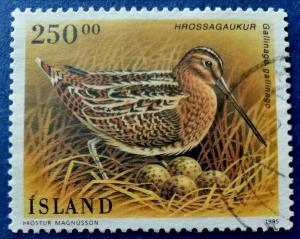 Iceland Birds Stamp Scott # 809 Used (I725)